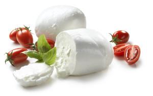 Mozzarella: The queen of the Mediterranean cuisine - Italy's Best Rome