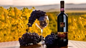 brunello wine shot photo  best private tours in Italy