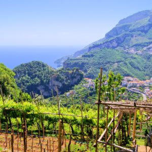 Ravello & Wine Estate Tour
