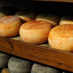 Rome_Food_Tour_cheese-300x300 Home