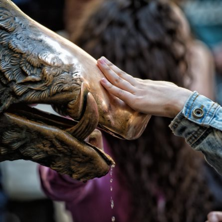 Hand touching fortune boar in Florence
