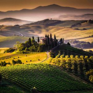 Chianti Countryside and Wine Tour