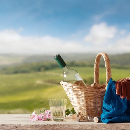Picnic for one Person in a mediterranean Landscape