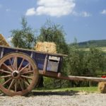 antique wagon on a farm in the Tuscan countryside